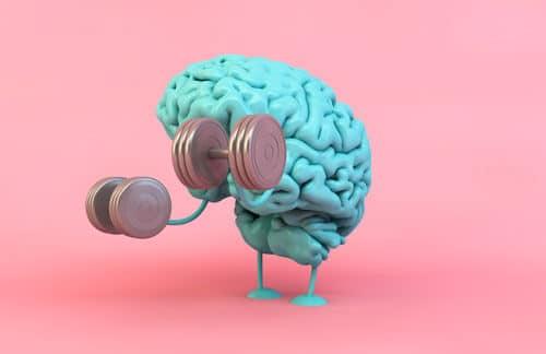Musculation du cerveau